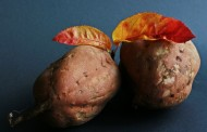 This Is the Real Difference Between Yam and Sweet Potato