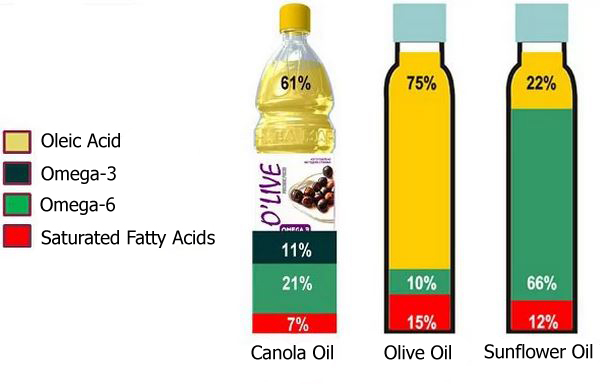 Can I Substitute canola oil for vegetable oil