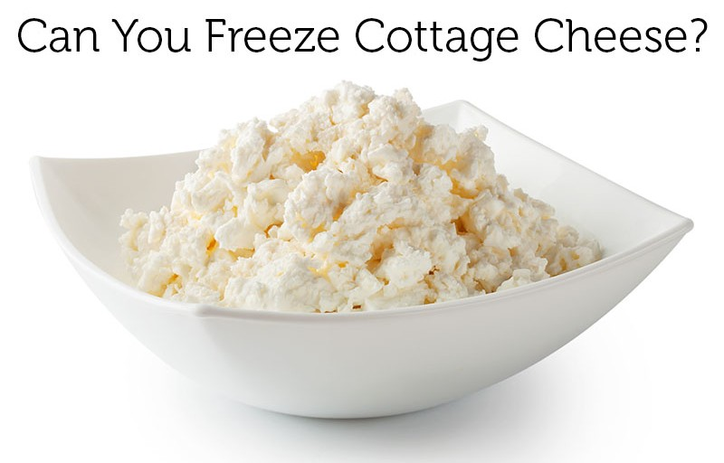 Can You Freeze Cottage Cheese and Eat It Later? This Might Surprise You