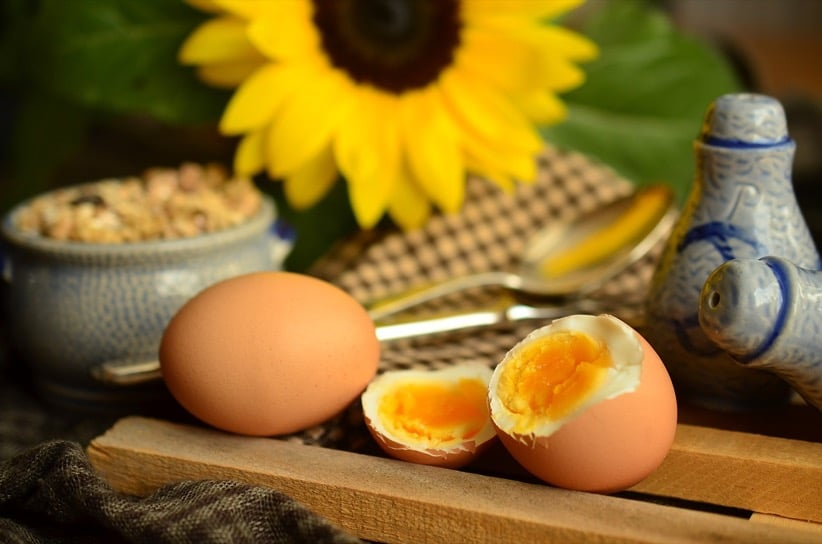 eggs protein sunflower