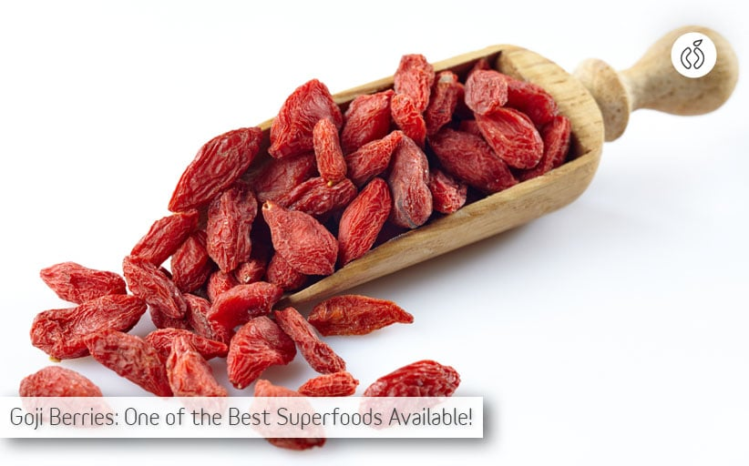 Best Places Where Can I Buy Goji Berries