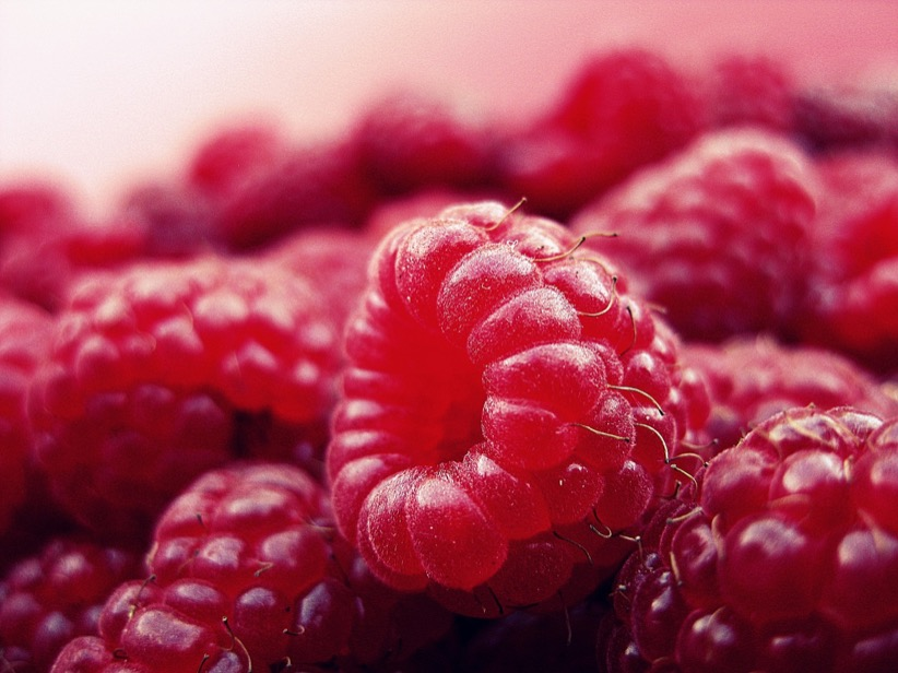 fresh raw raspberry