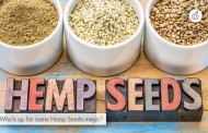 Seven Evidence Based Hemp Seeds Health Benefits and Side Effects