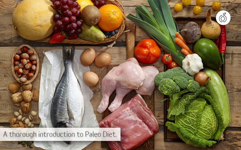 What Is the Paleo Diet, A Thorough Introduction