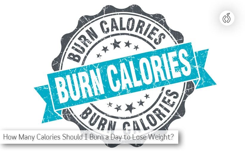 How Many Calories Should I Burn a Day to Lose Weight? (The Shocking Truth)